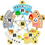 〜結果発表〜漢方五情☆体質チェック